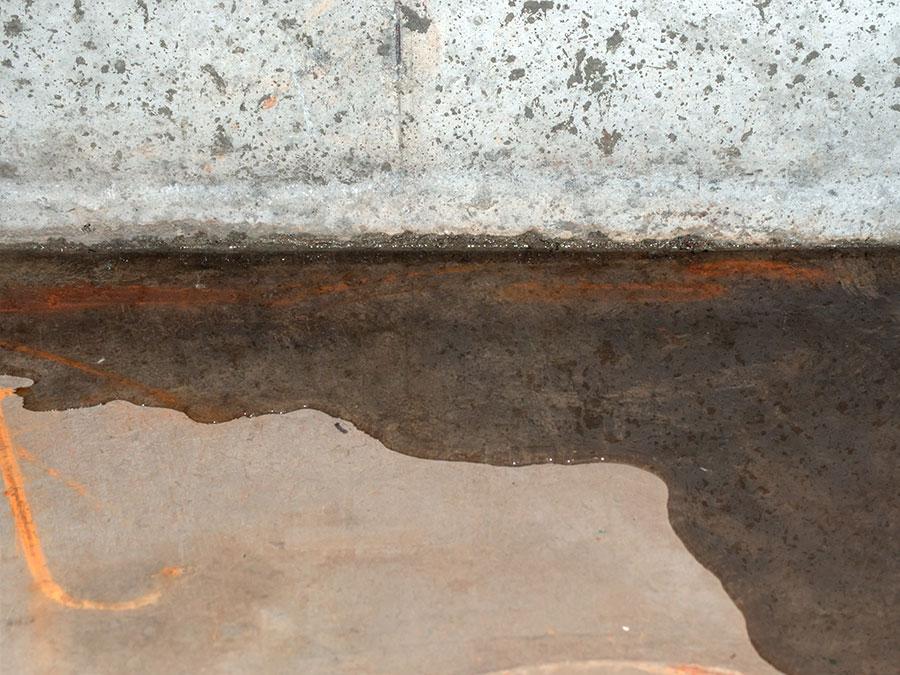 Utah Mold Damage Repair Company