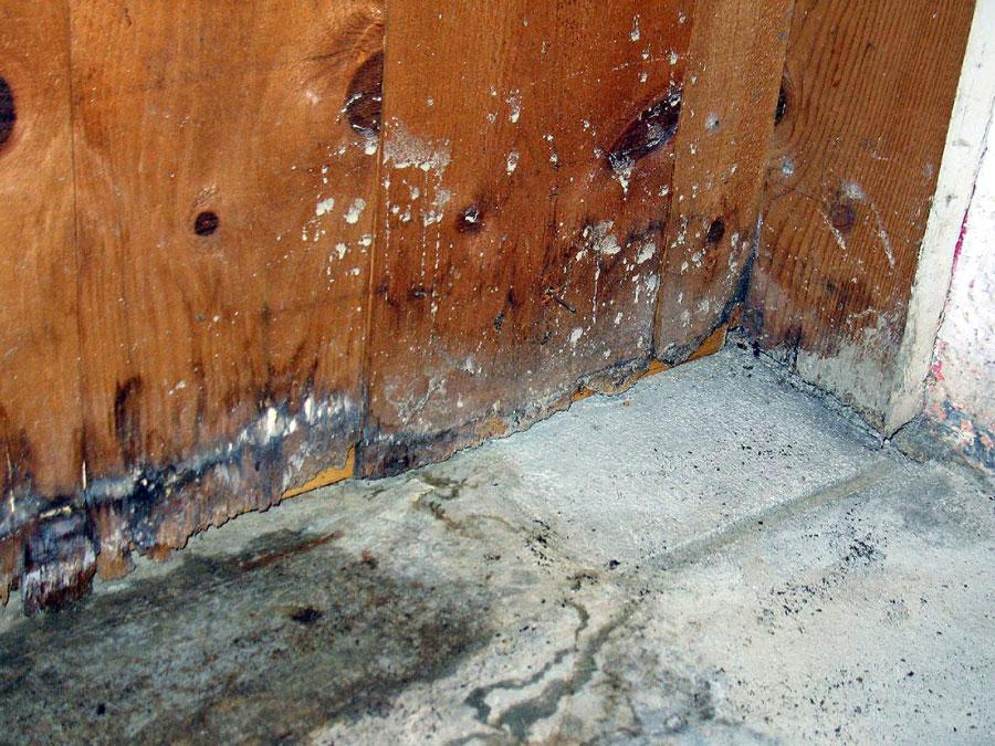 Utah Sewage Damage Restoration Company