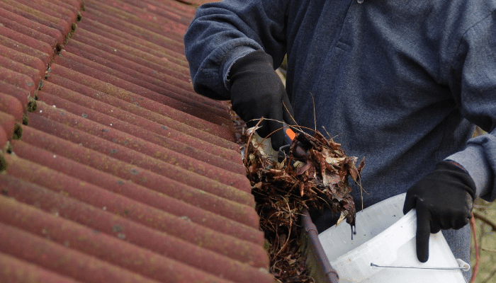 Avoid Water Damage by Cleaning Rain Gutters Properly