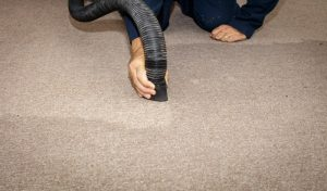 Water Damaged Carpet: How to Clean Up
