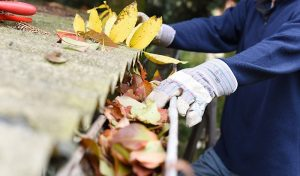 How to Effectively Clean the Rain Gutters on Your Home
