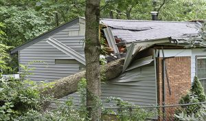 Storm Damage: How to Storm-Proof Your House?