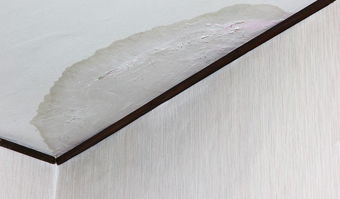 5 Most Frequently Asked Questions About Water Damage