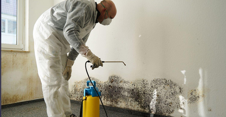 Utah Mold Damage Repair Service