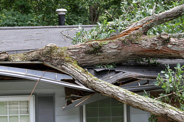 Utah Storm Damage Repair Company